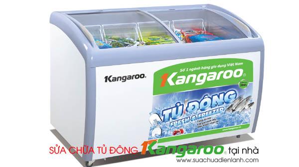 Sửa chữa tủ đông Kangaroo